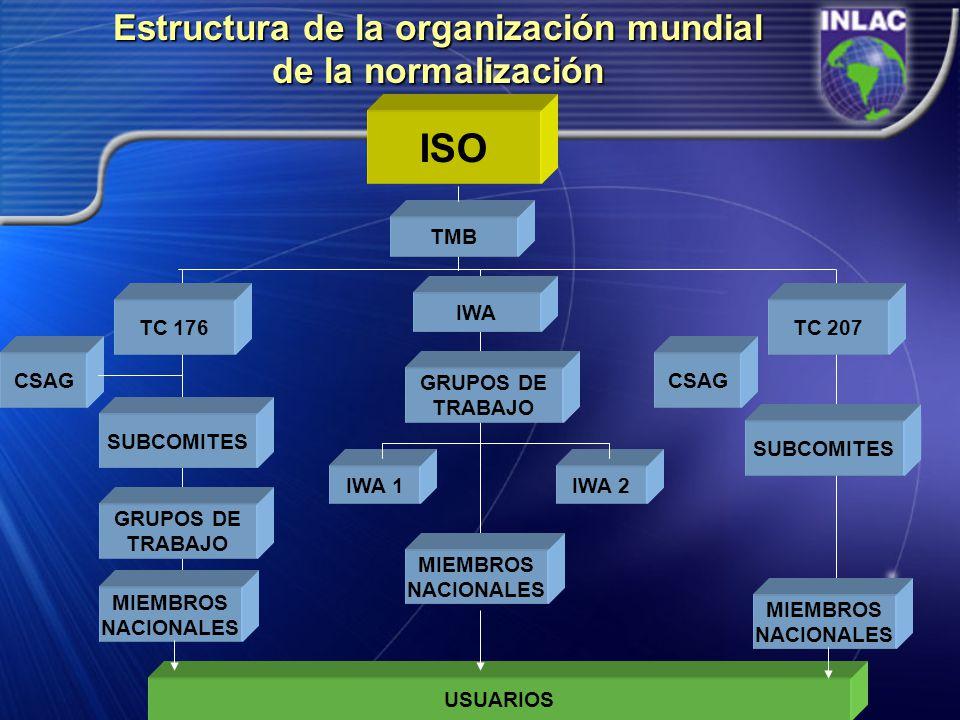 Estructura de la organización mundial