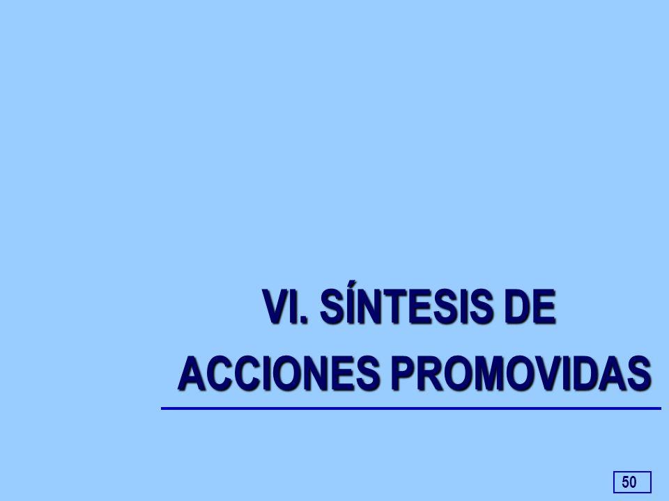 VI. SÍNTESIS DE ACCIONES PROMOVIDAS