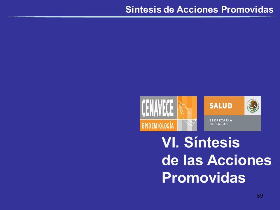 VI. Síntesis de las Acciones Promovidas