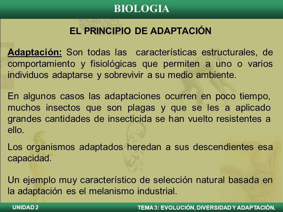 EL PRINCIPIO DE ADAPTACIÓN