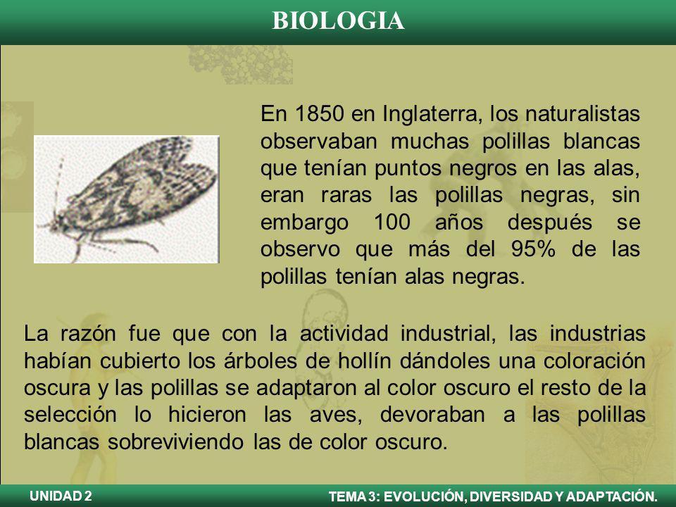 En 1850 en Inglaterra, los naturalistas observaban muchas polillas blancas que tenían puntos negros en las alas, eran raras las polillas negras, sin embargo 100 años después se observo que más del 95% de las polillas tenían alas negras.