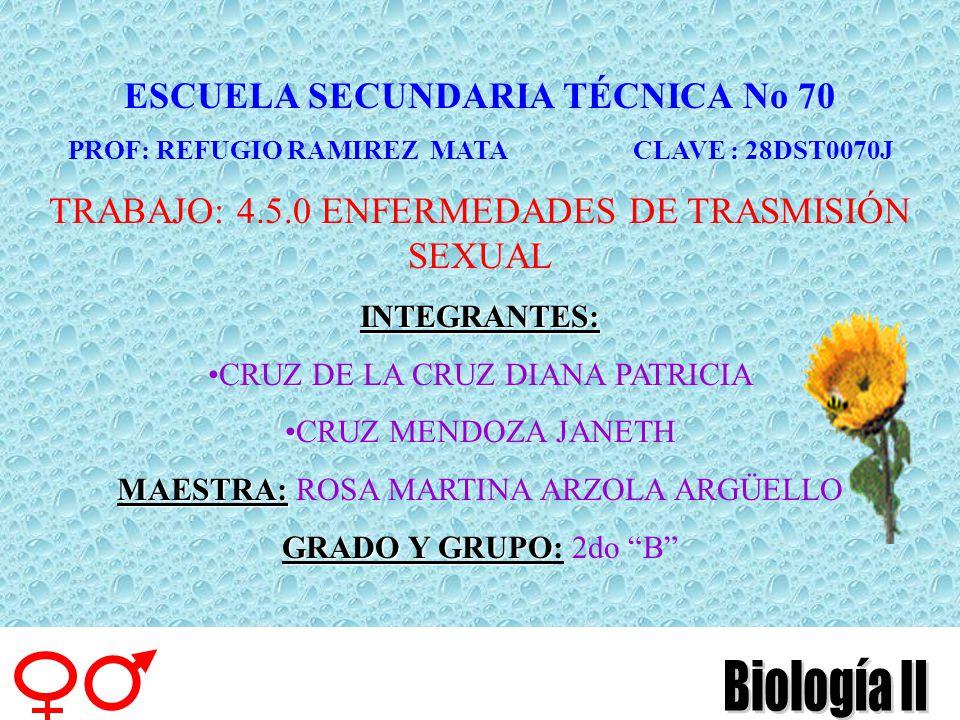 ESCUELA SECUNDARIA TÉCNICA No 70