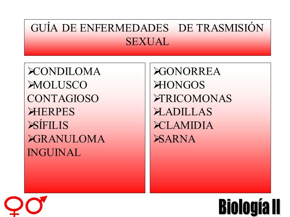 GUÍA DE ENFERMEDADES DE TRASMISIÓN SEXUAL
