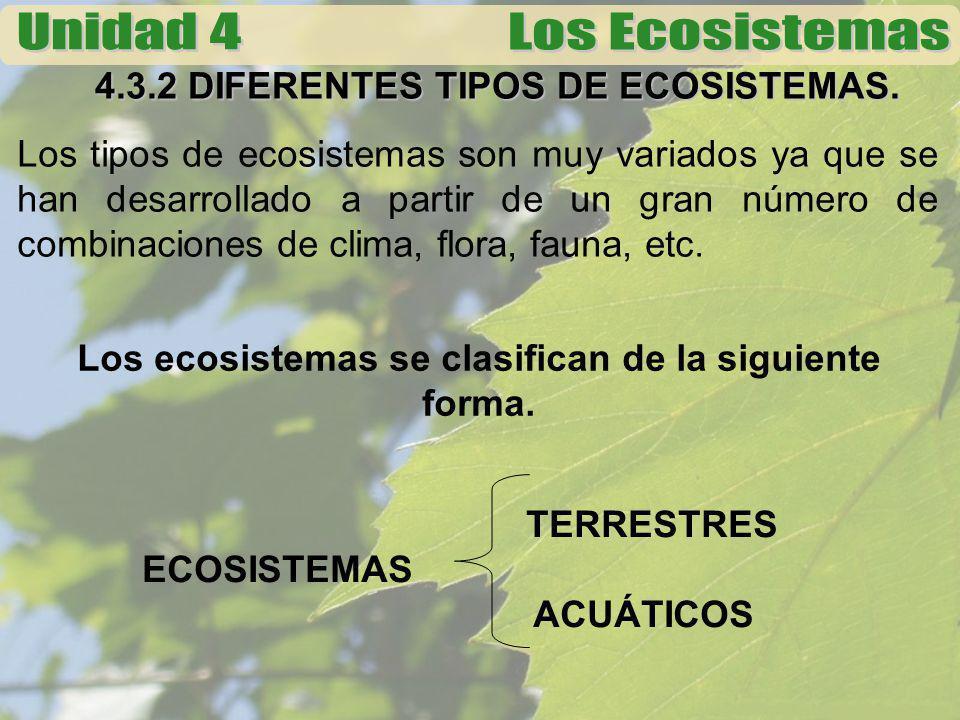4.3.2 DIFERENTES TIPOS DE ECOSISTEMAS.