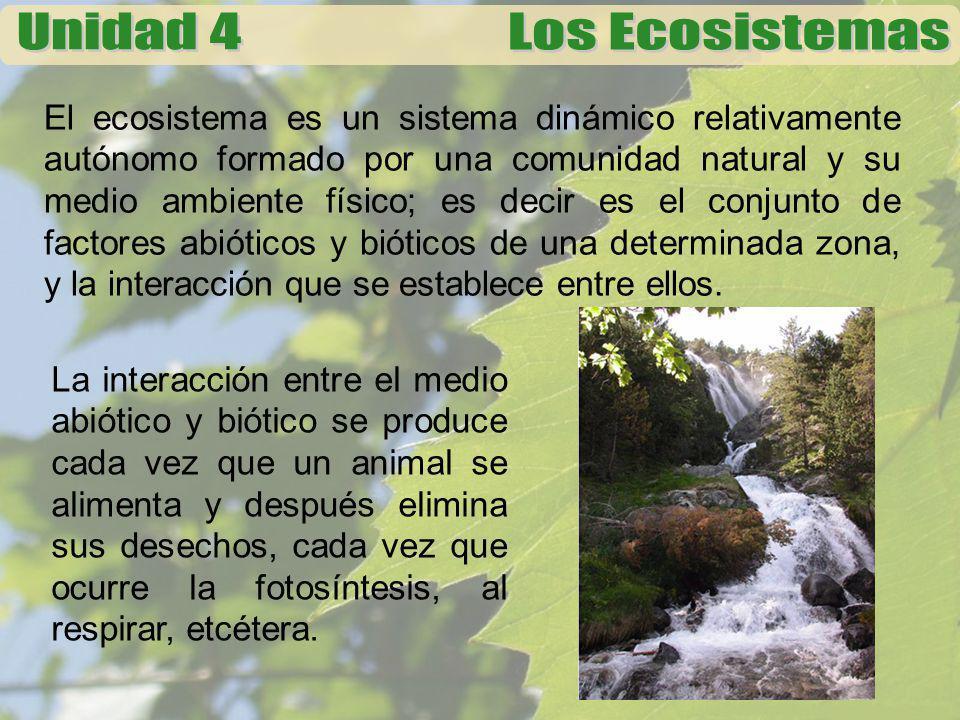 El ecosistema es un sistema dinámico relativamente autónomo formado por una comunidad natural y su medio ambiente físico; es decir es el conjunto de factores abióticos y bióticos de una determinada zona, y la interacción que se establece entre ellos.