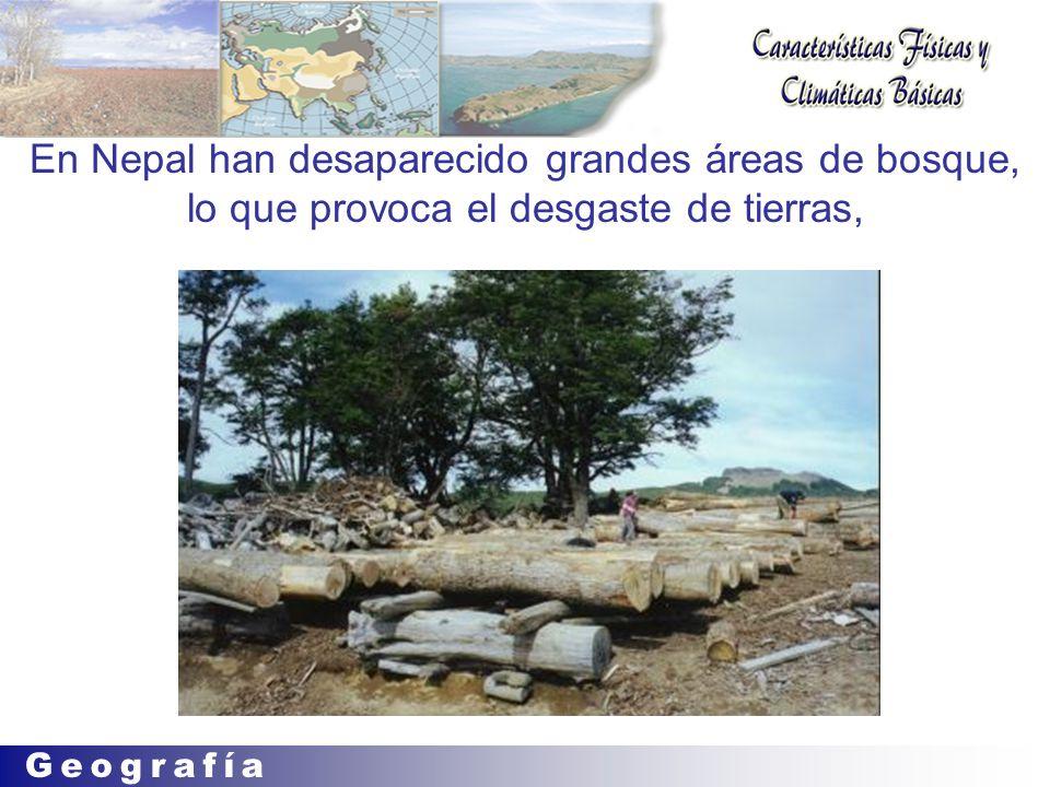 En Nepal han desaparecido grandes áreas de bosque, lo que provoca el desgaste de tierras,