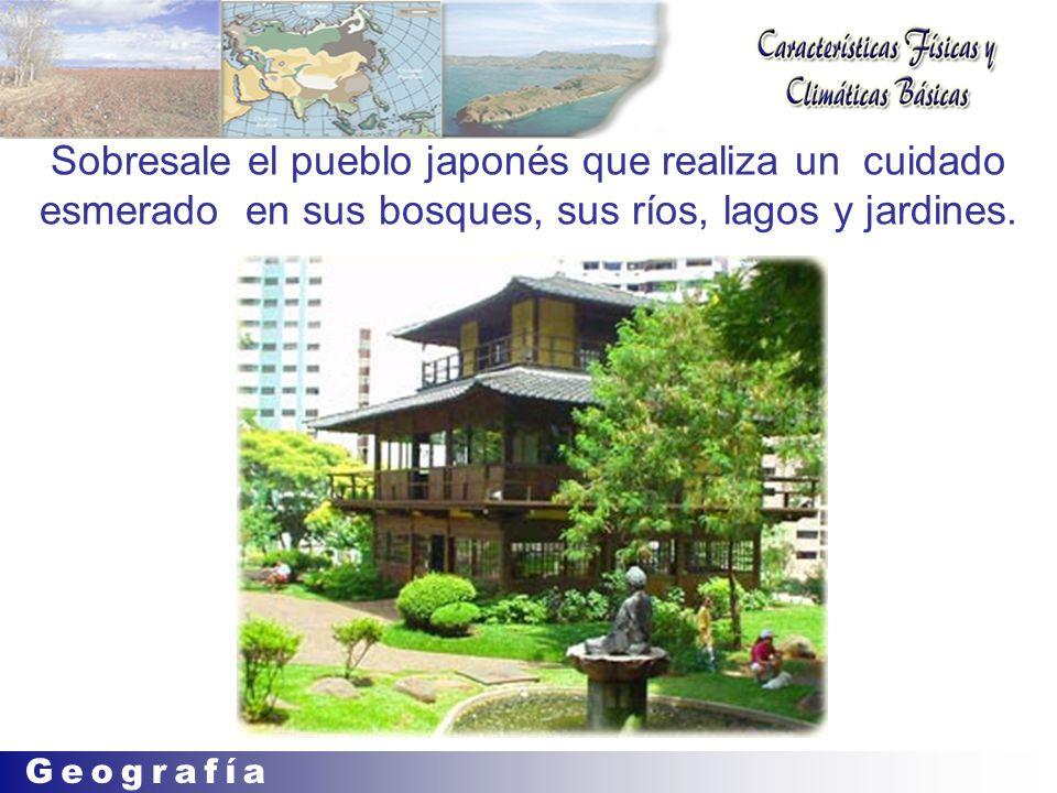 Sobresale el pueblo japonés que realiza un cuidado esmerado en sus bosques, sus ríos, lagos y jardines.