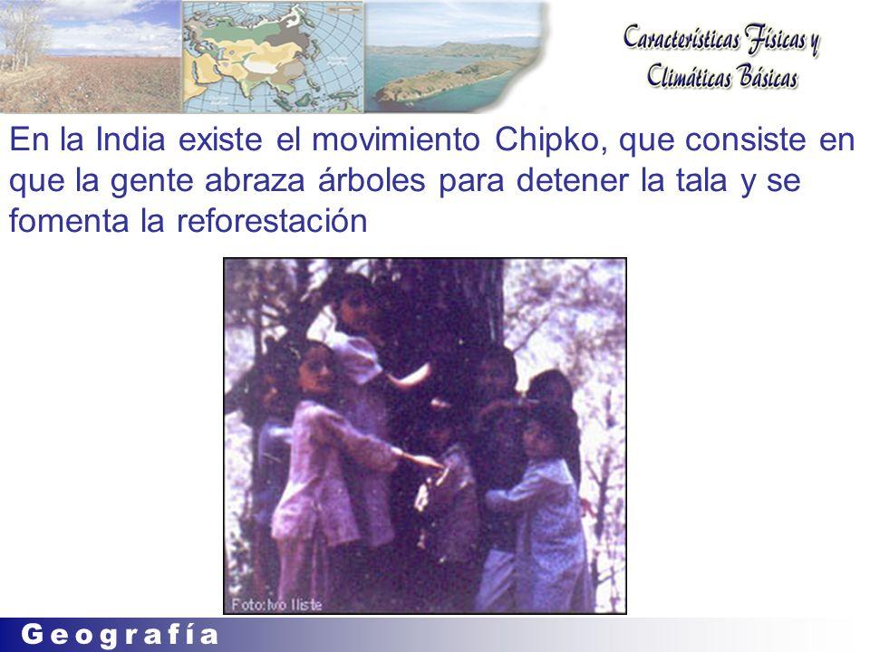 En la India existe el movimiento Chipko, que consiste en que la gente abraza árboles para detener la tala y se fomenta la reforestación