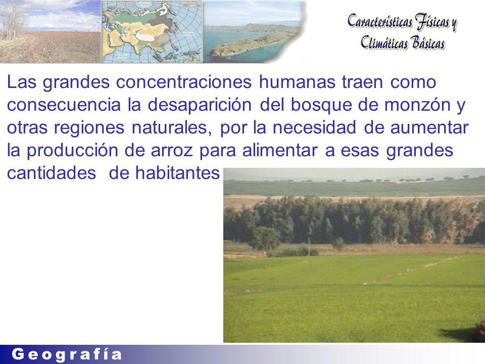 Las grandes concentraciones humanas traen como consecuencia la desaparición del bosque de monzón y otras regiones naturales, por la necesidad de aumentar la producción de arroz para alimentar a esas grandes cantidades de habitantes