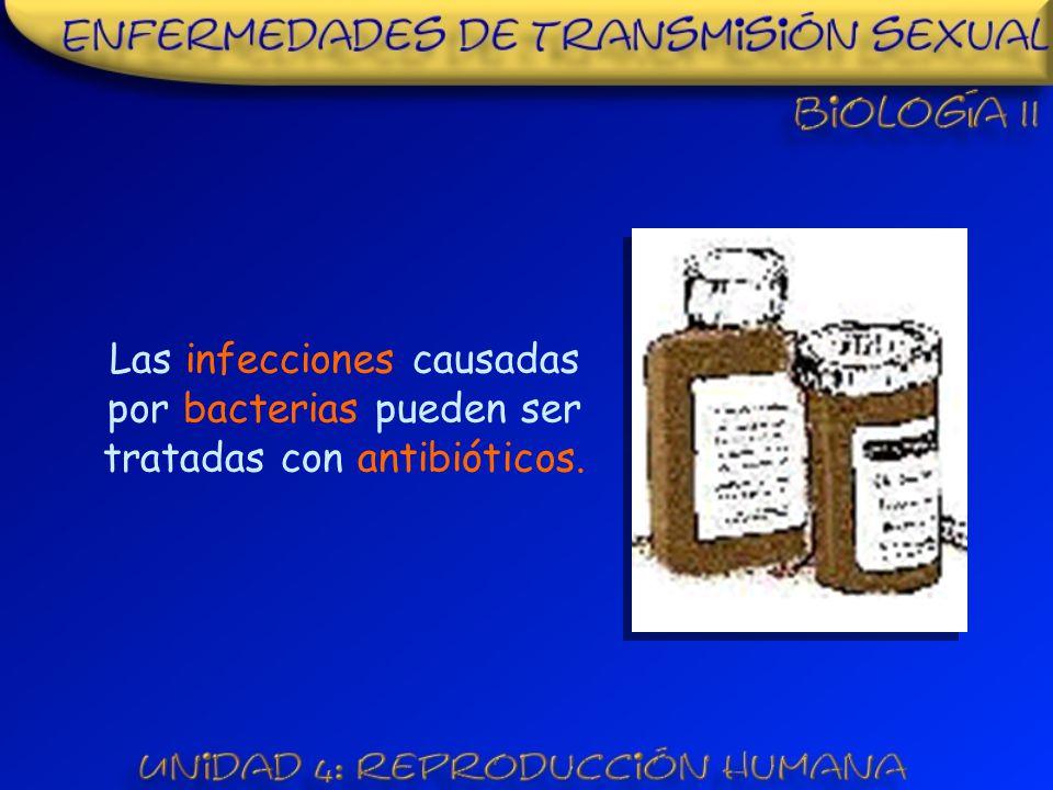 Las infecciones causadas por bacterias pueden ser tratadas con antibióticos.
