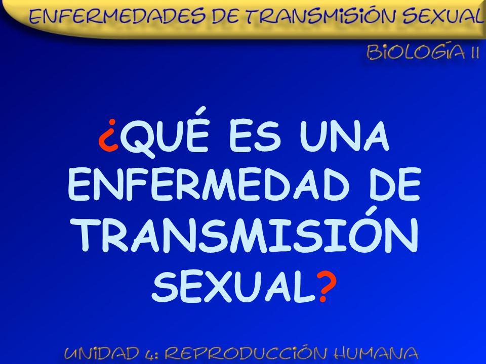 ¿QUÉ ES UNA ENFERMEDAD DE TRANSMISIÓN SEXUAL