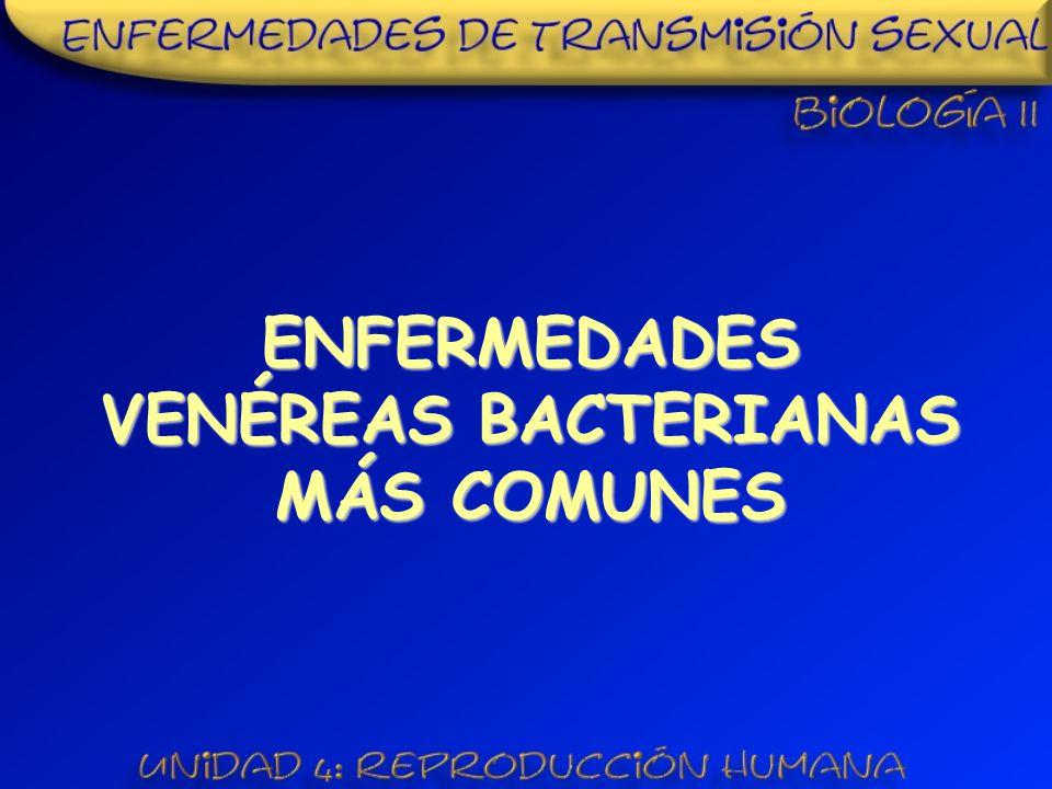 ENFERMEDADES VENÉREAS BACTERIANAS MÁS COMUNES