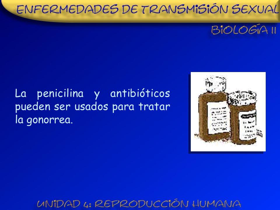 La penicilina y antibióticos pueden ser usados para tratar la gonorrea.