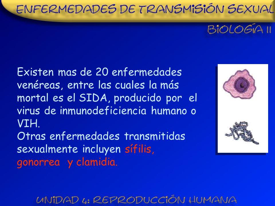 Existen mas de 20 enfermedades venéreas, entre las cuales la más mortal es el SIDA, producido por el virus de inmunodeficiencia humano o VIH.
