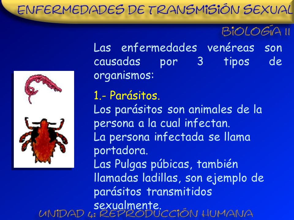 Las enfermedades venéreas son causadas por 3 tipos de organismos: