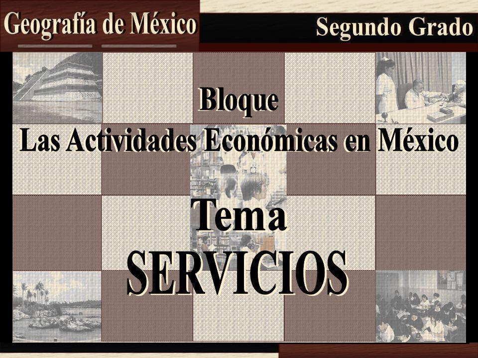 Las Actividades Económicas en México