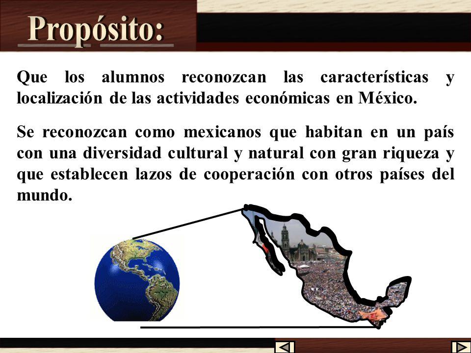 Propósito: Que los alumnos reconozcan las características y localización de las actividades económicas en México.