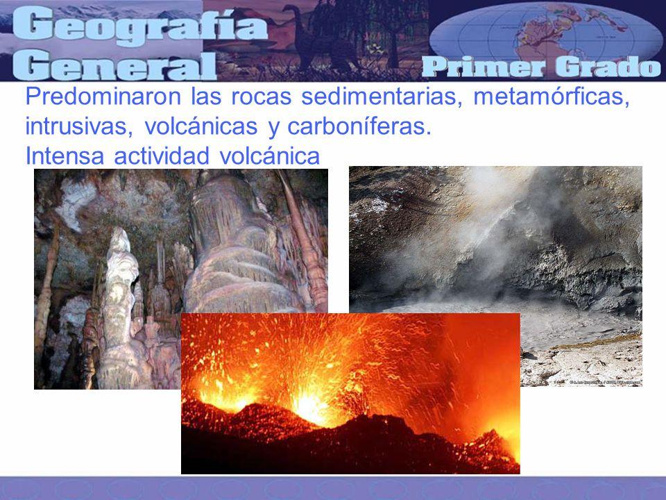 Predominaron las rocas sedimentarias, metamórficas, intrusivas, volcánicas y carboníferas.