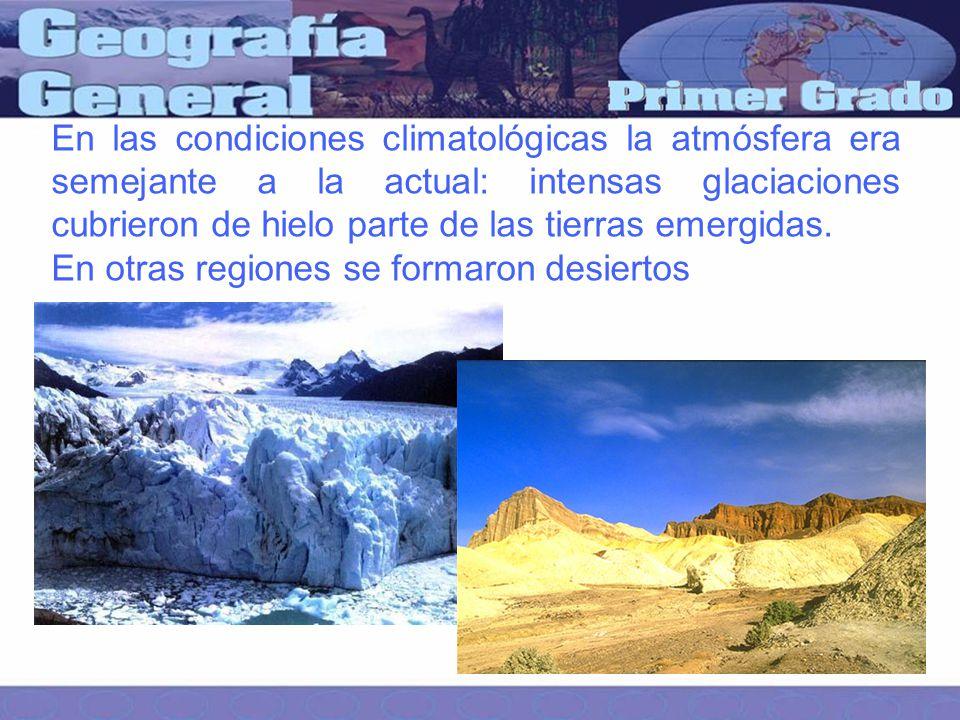 En las condiciones climatológicas la atmósfera era semejante a la actual: intensas glaciaciones cubrieron de hielo parte de las tierras emergidas.