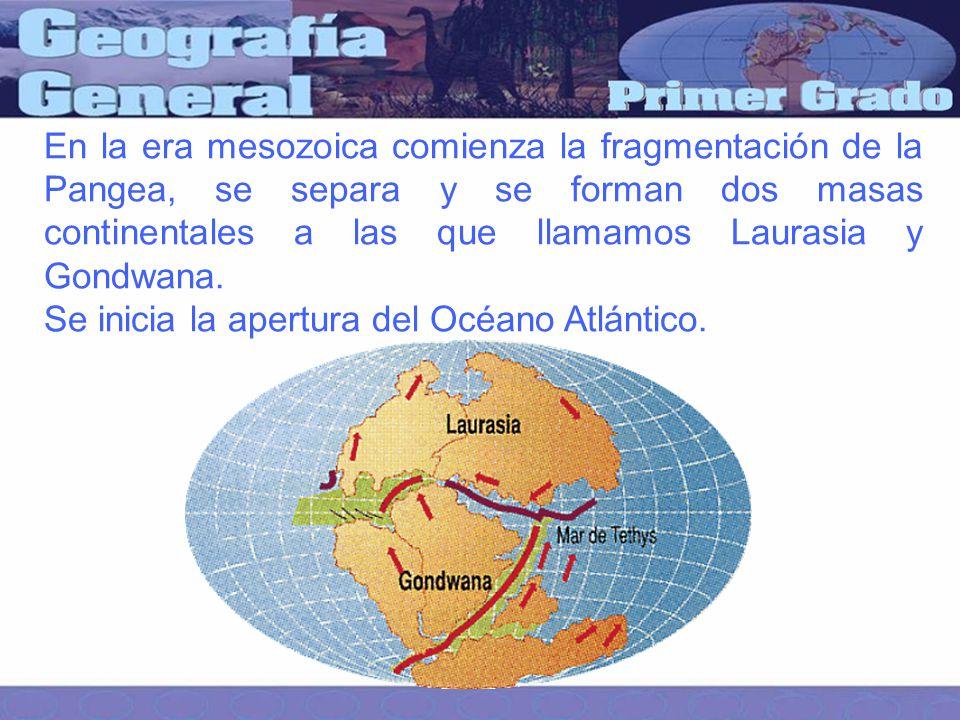En la era mesozoica comienza la fragmentación de la Pangea, se separa y se forman dos masas continentales a las que llamamos Laurasia y Gondwana.