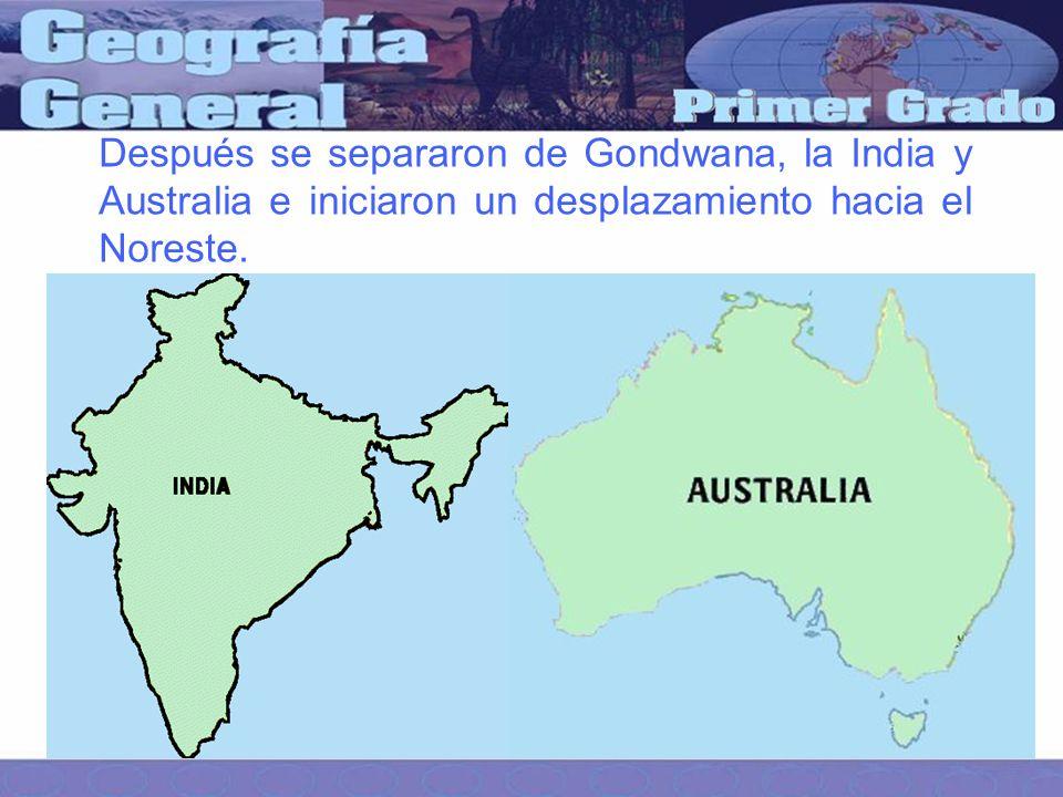 Después se separaron de Gondwana, la India y Australia e iniciaron un desplazamiento hacia el Noreste.