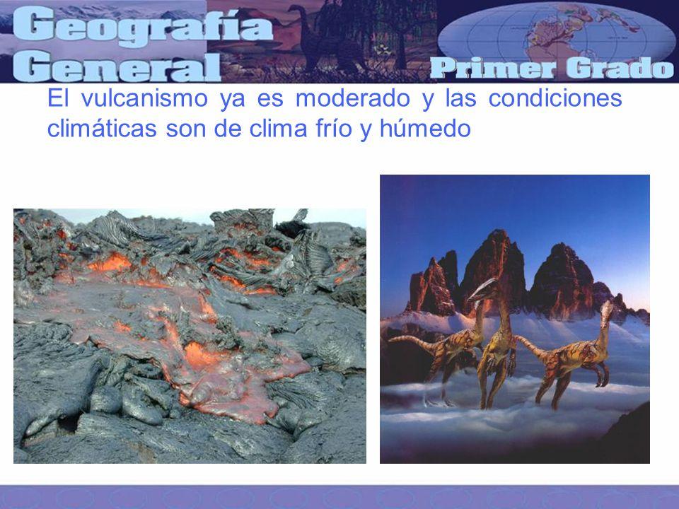 El vulcanismo ya es moderado y las condiciones climáticas son de clima frío y húmedo