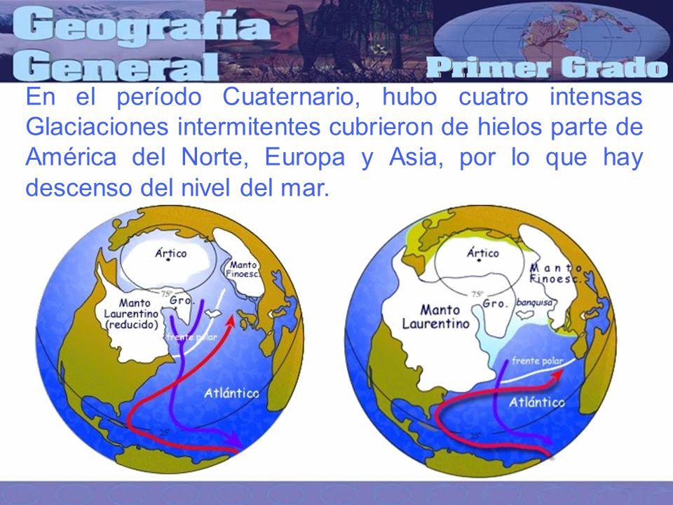 En el período Cuaternario, hubo cuatro intensas Glaciaciones intermitentes cubrieron de hielos parte de América del Norte, Europa y Asia, por lo que hay descenso del nivel del mar.