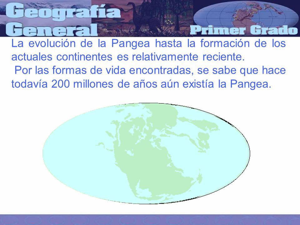 La evolución de la Pangea hasta la formación de los actuales continentes es relativamente reciente.
