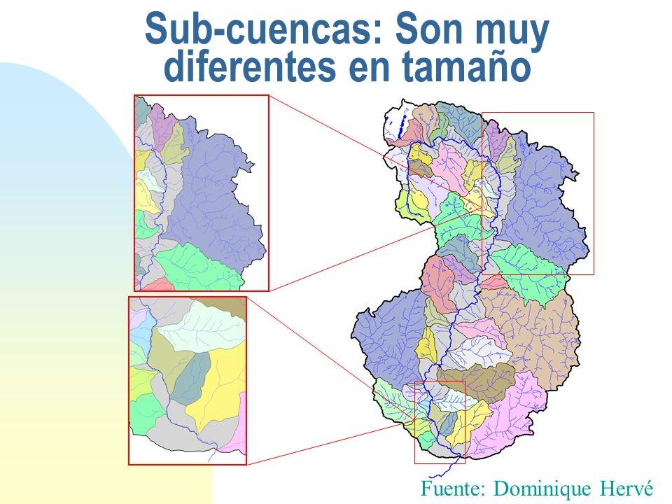 Sub-cuencas: Son muy diferentes en tamaño
