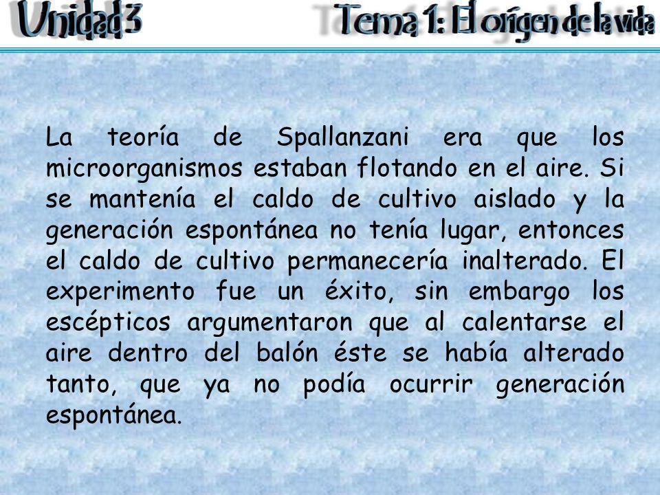 La teoría de Spallanzani era que los microorganismos estaban flotando en el aire.