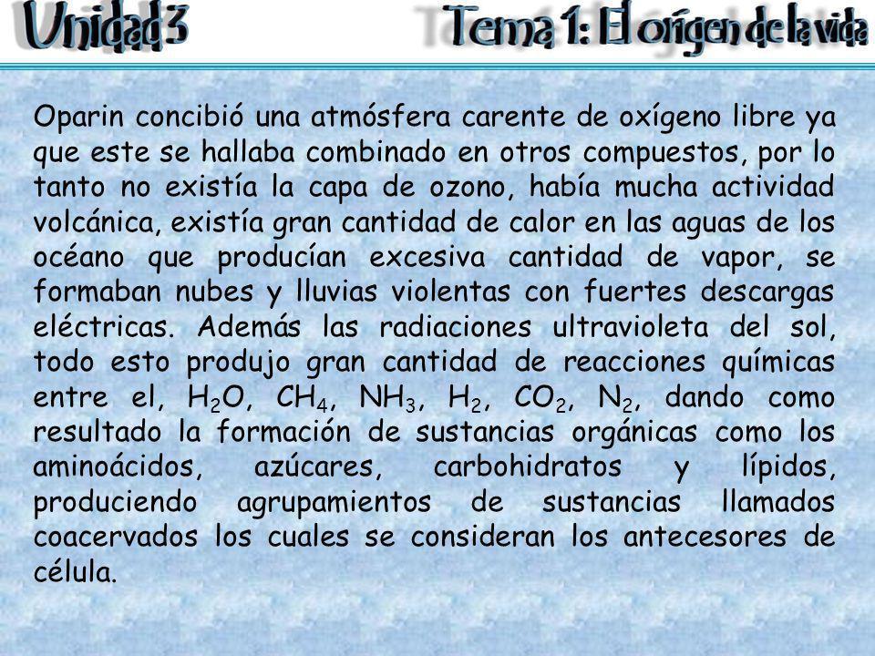 Oparin concibió una atmósfera carente de oxígeno libre ya que este se hallaba combinado en otros compuestos, por lo tanto no existía la capa de ozono, había mucha actividad volcánica, existía gran cantidad de calor en las aguas de los océano que producían excesiva cantidad de vapor, se formaban nubes y lluvias violentas con fuertes descargas eléctricas.