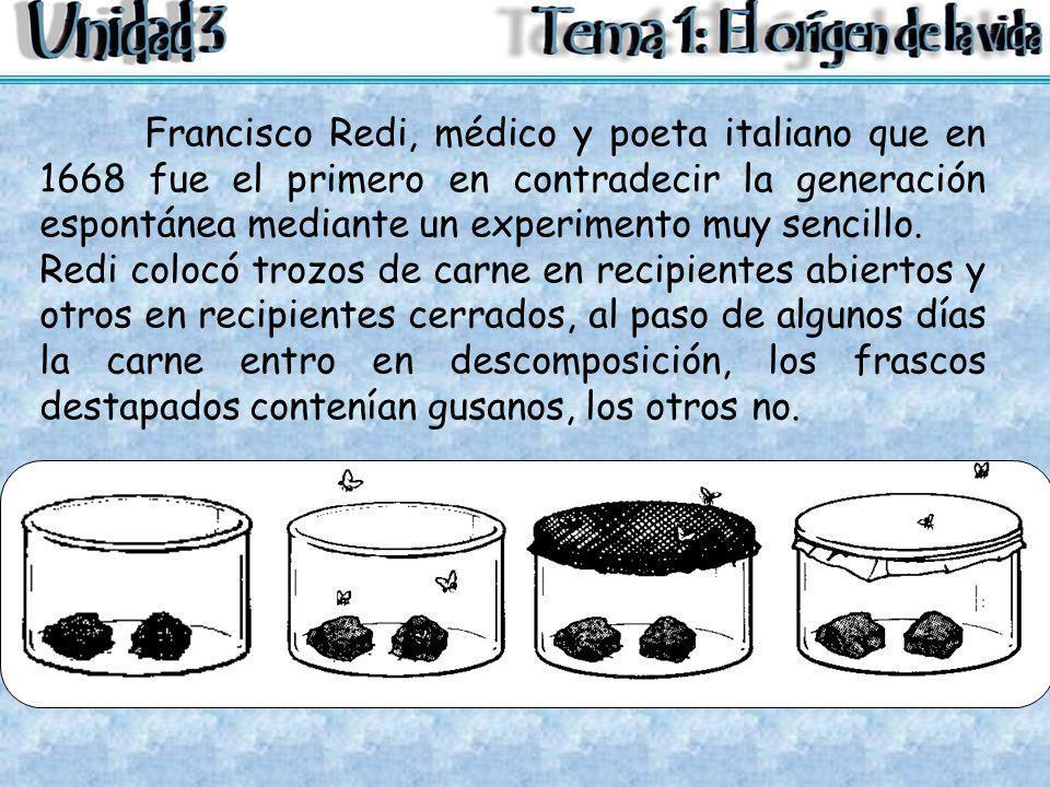 Francisco Redi, médico y poeta italiano que en 1668 fue el primero en contradecir la generación espontánea mediante un experimento muy sencillo.