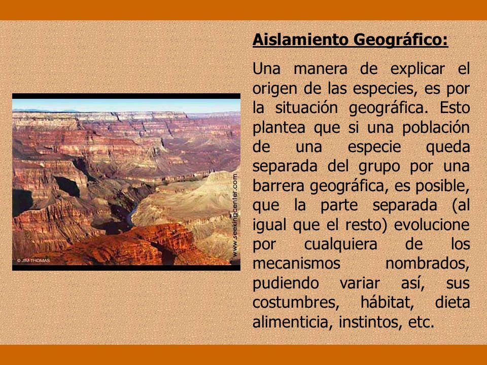 Aislamiento Geográfico: