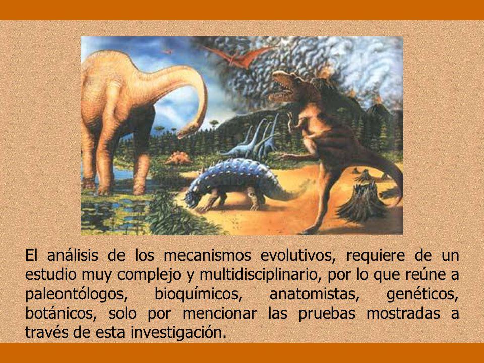 El análisis de los mecanismos evolutivos, requiere de un estudio muy complejo y multidisciplinario, por lo que reúne a paleontólogos, bioquímicos, anatomistas, genéticos, botánicos, solo por mencionar las pruebas mostradas a través de esta investigación.