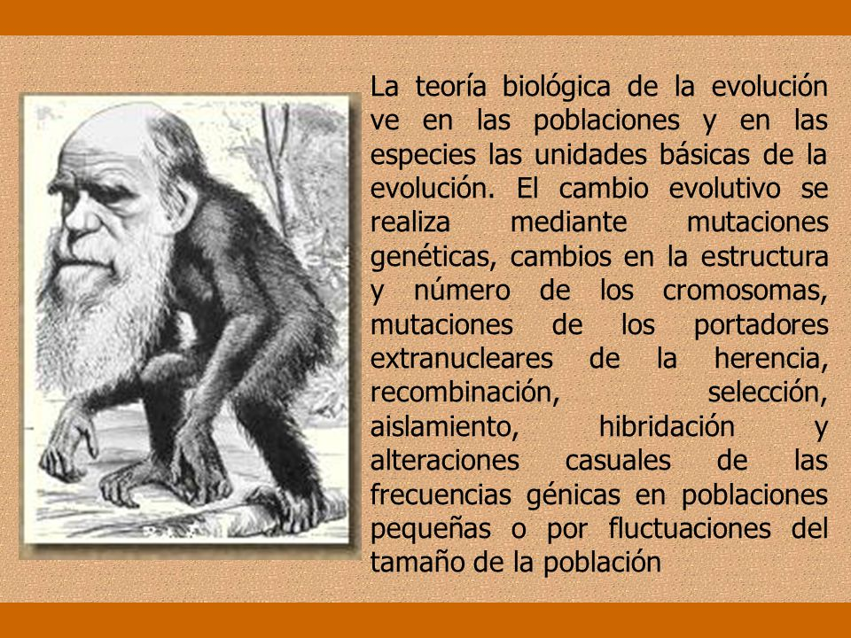 La teoría biológica de la evolución ve en las poblaciones y en las especies las unidades básicas de la evolución.