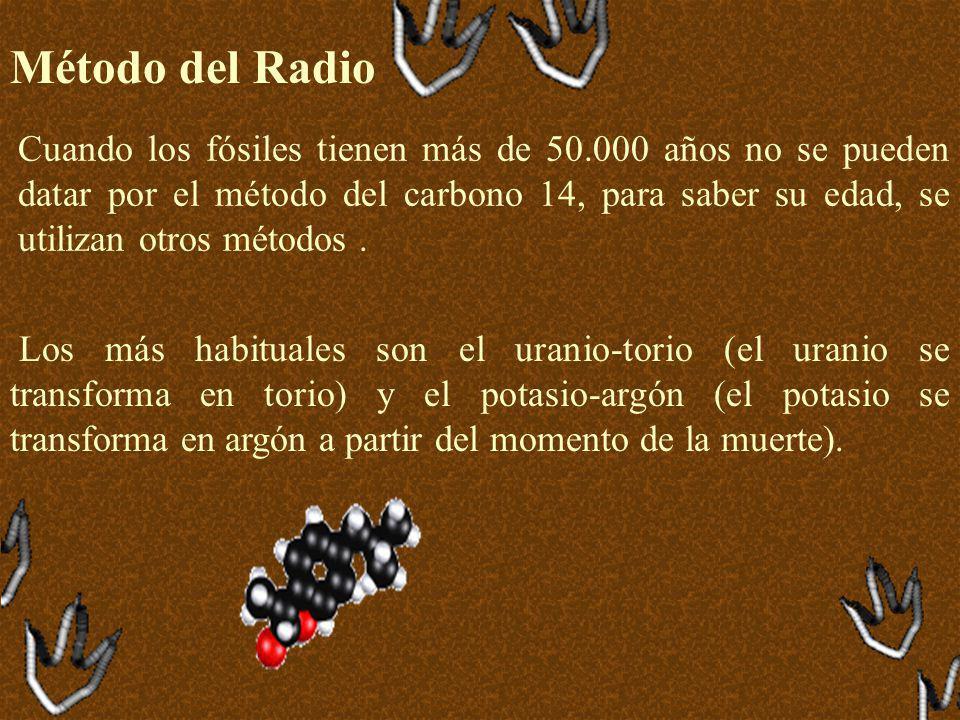 Método del Radio