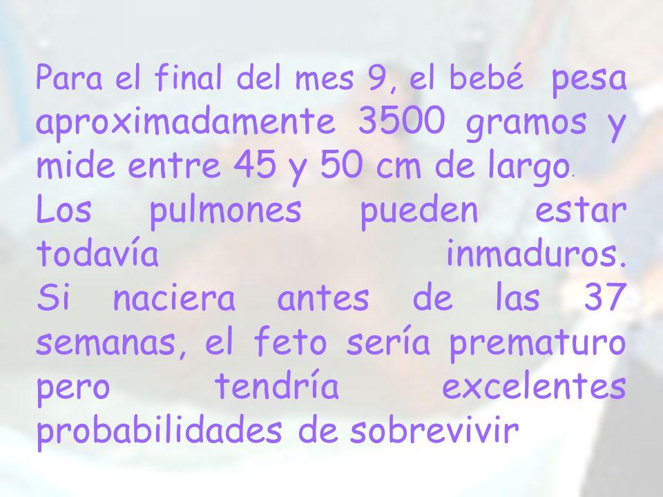 Para el final del mes 9, el bebé pesa aproximadamente 3500 gramos y mide entre 45 y 50 cm de largo.