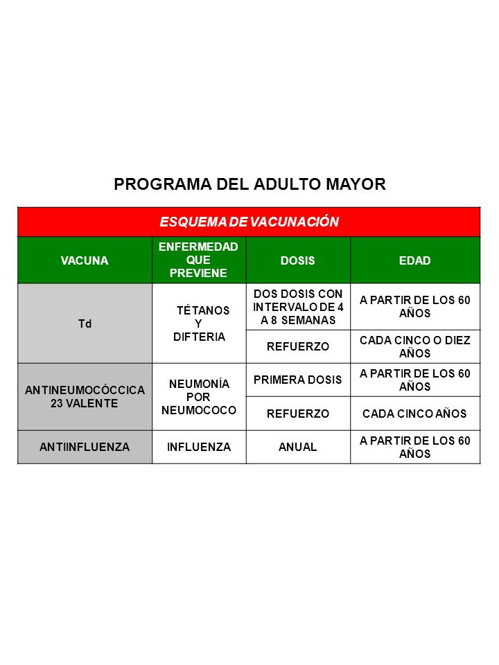 PROGRAMA DEL ADULTO MAYOR