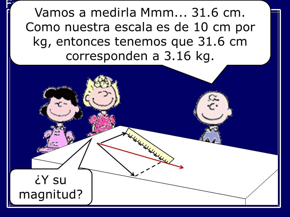 Vamos a medirla Mmm... 31.6 cm. Como nuestra escala es de 10 cm por kg, entonces tenemos que 31.6 cm corresponden a 3.16 kg.