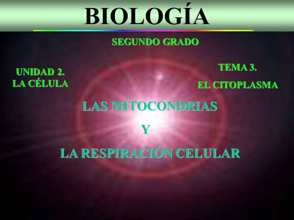 BIOLOGÍA Y LA RESPIRACIÓN CELULAR SEGUNDO GRADO TEMA 3.