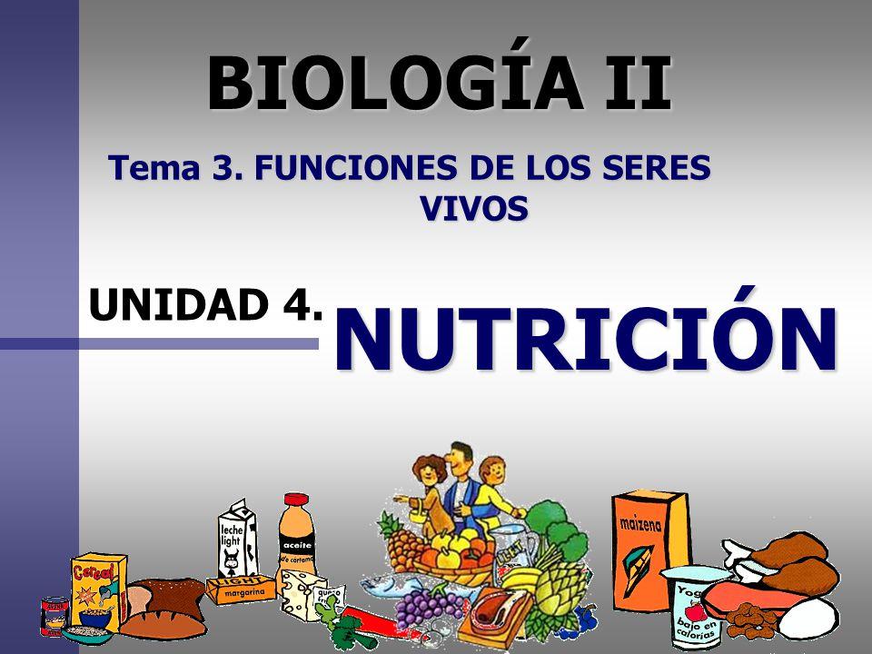 BIOLOGÍA II Tema 3. FUNCIONES DE LOS SERES VIVOS UNIDAD 4. NUTRICIÓN
