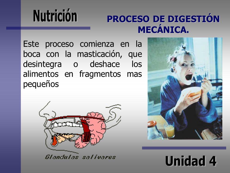 PROCESO DE DIGESTIÓN MECÁNICA.