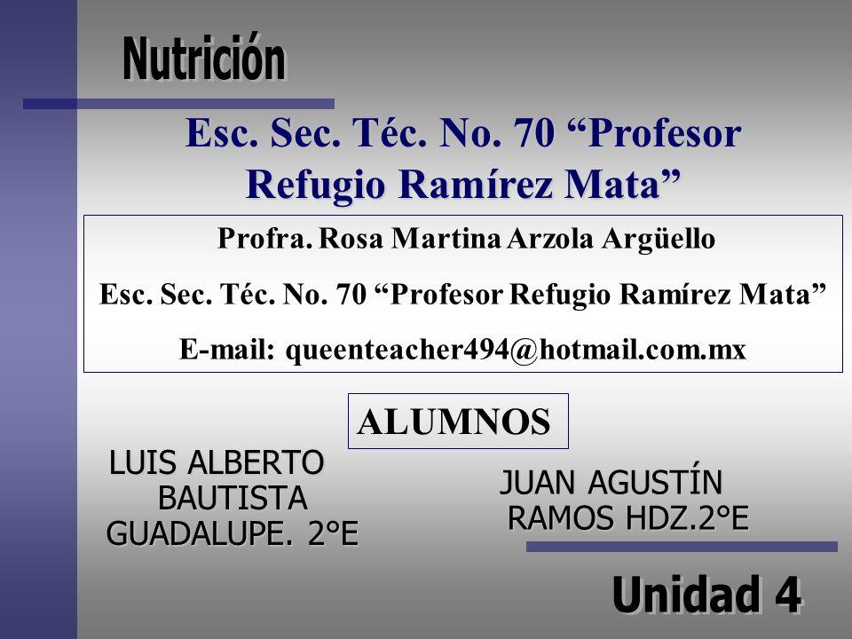 Esc. Sec. Téc. No. 70 Profesor Refugio Ramírez Mata