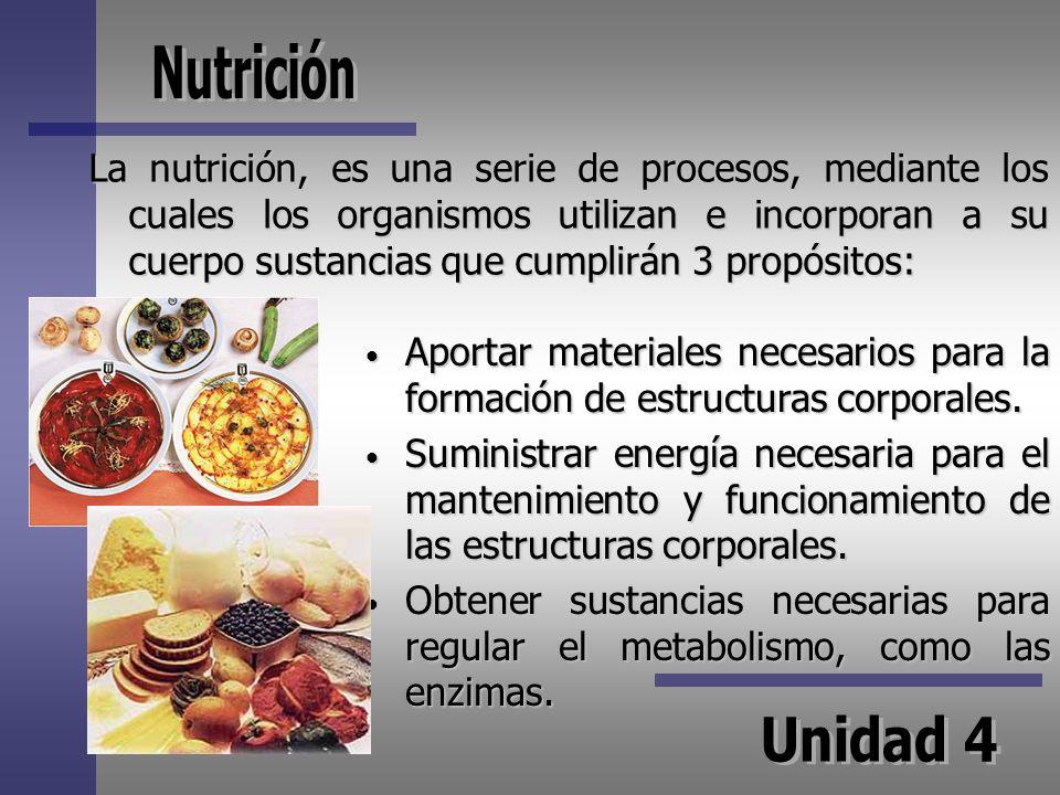 La nutrición, es una serie de procesos, mediante los cuales los organismos utilizan e incorporan a su cuerpo sustancias que cumplirán 3 propósitos: