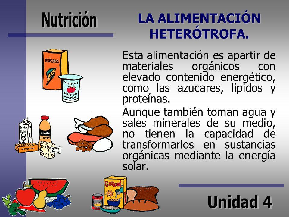 LA ALIMENTACIÓN HETERÓTROFA.