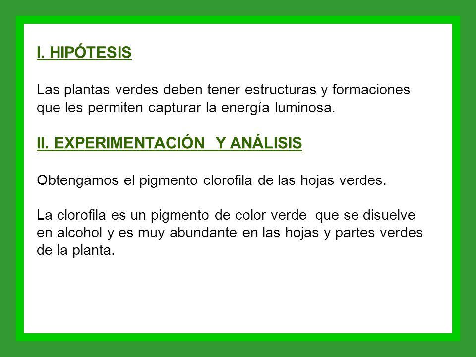 II. EXPERIMENTACIÓN Y ANÁLISIS