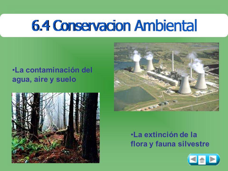 La contaminación del agua, aire y suelo