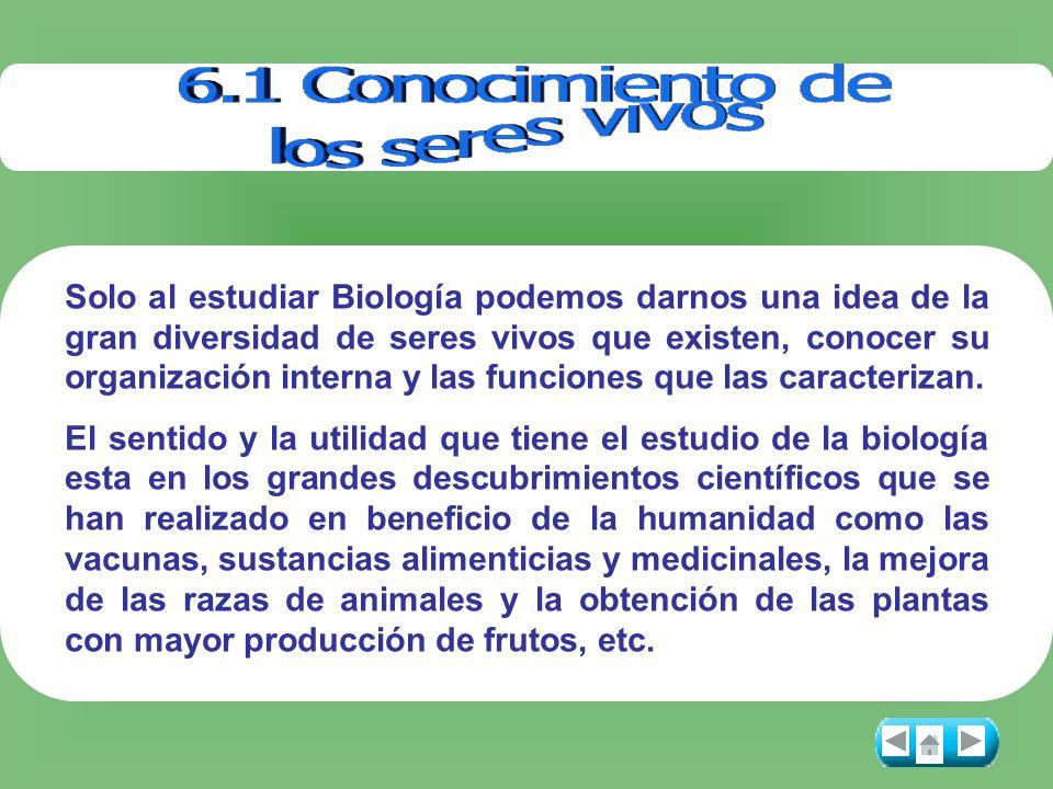 Solo al estudiar Biología podemos darnos una idea de la gran diversidad de seres vivos que existen, conocer su organización interna y las funciones que las caracterizan.