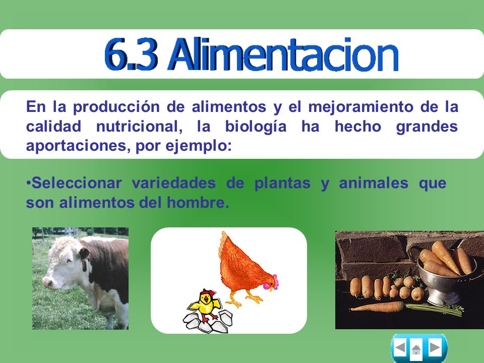 En la producción de alimentos y el mejoramiento de la calidad nutricional, la biología ha hecho grandes aportaciones, por ejemplo: