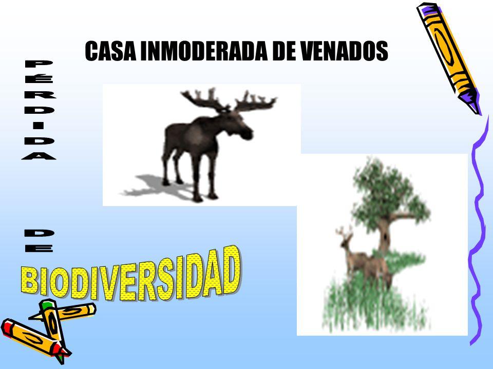 CASA INMODERADA DE VENADOS